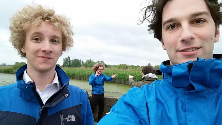 3 Taminos in Belgium